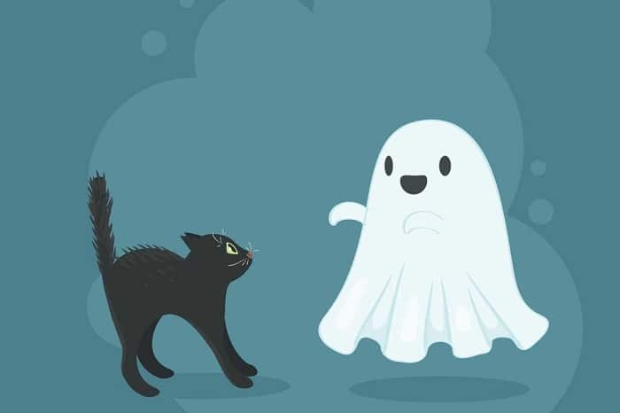 drawing of a ghost and a black cat