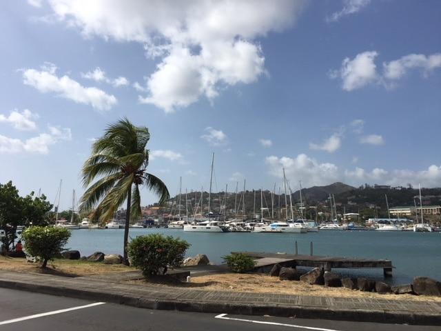 Grenada Sea Shores